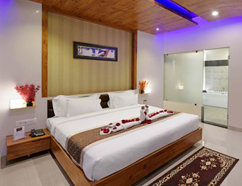 Hotels near Udaipur airport