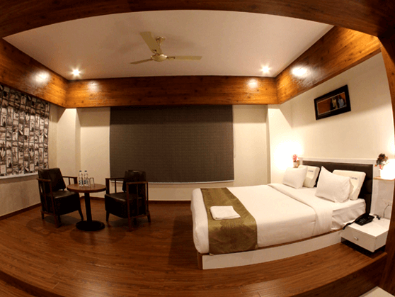 Hotels in udaipur